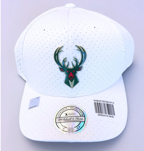 Milwaukee Bucks Curved 110